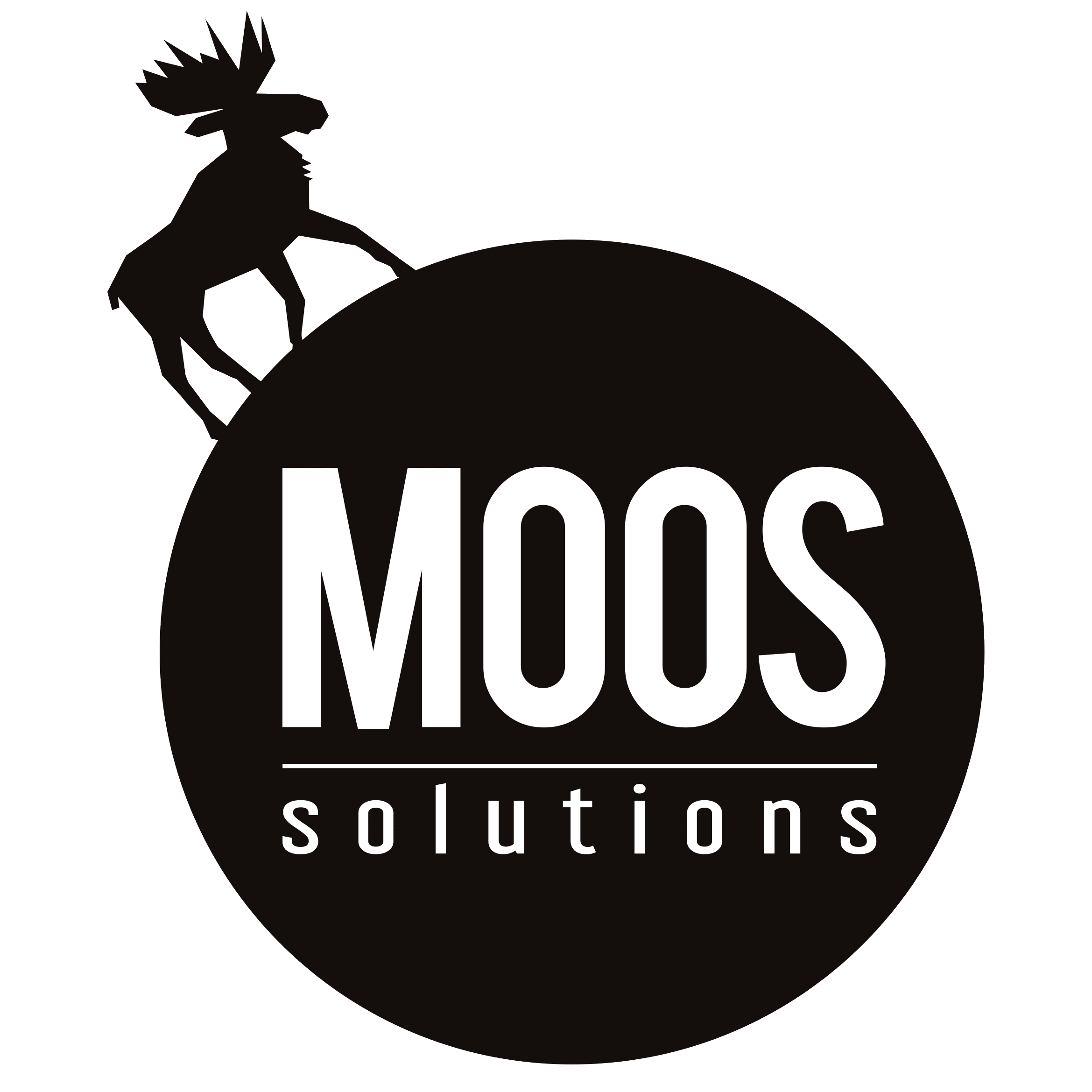 webdesign Moos.Solutions